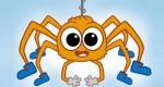 Petites astuces pour se débarrasser des araignées