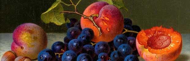 La conservation des fruits au 19ème siècle