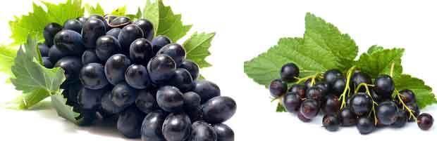 Tonique au jus de raisin et de cassis