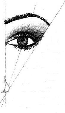 alignement des sourcils