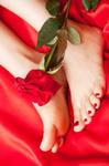 des pieds magnifiques
