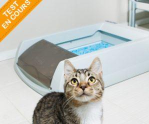 Testez gratuitement la litière ScoopFree® de PetSafe