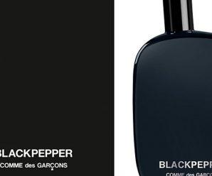 Recevez gratuitement un échantillon du parfum BlackPepper