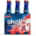 Testez gratuitement la bière aromatisée Vodka-Cranberry et Myrtille SKOLL