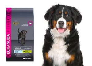 croquette pour chien eukanuba eukanuba adult breed specific rottweiler croquettes pour chien. Black Bedroom Furniture Sets. Home Design Ideas