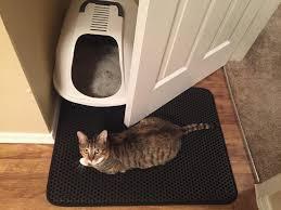 Testez gratuitement le tapis attrape-litière de King Cat